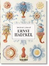 The Art and Science of Ernst Haeckel. 40th Anniversary Edition - Rainer Willmann Julia Voss
