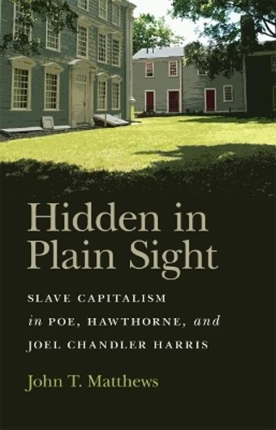 Hidden in Plain Sight - John T. Matthews