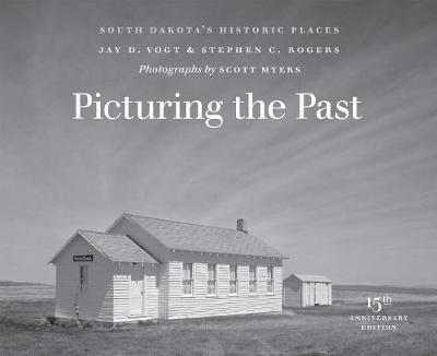 Picturing the Past - Jay D. Vogt