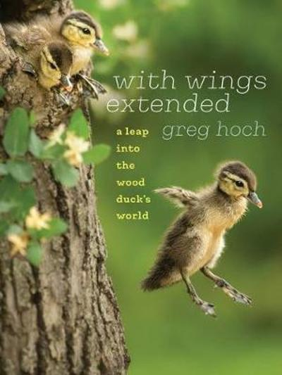 With Wings Extended - Greg Hoch
