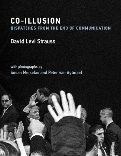 Co-Illusion - David Levi Strauss