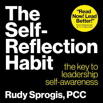 The Self-Reflection Habit - Rudy Sprogis