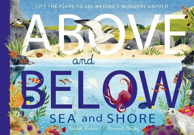 Above and Below: Sea and Shore - Harriet Evans