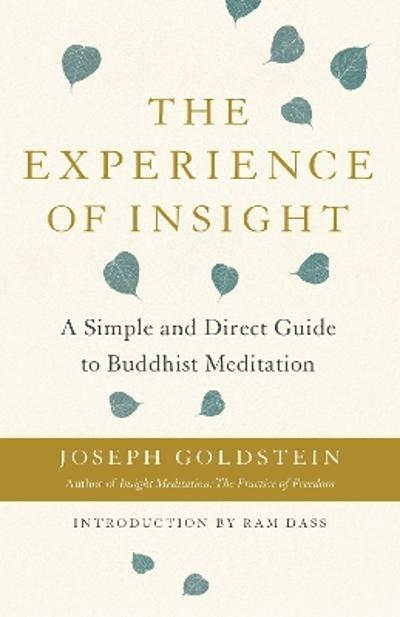 The Experience of Insight - Joseph Goldstein