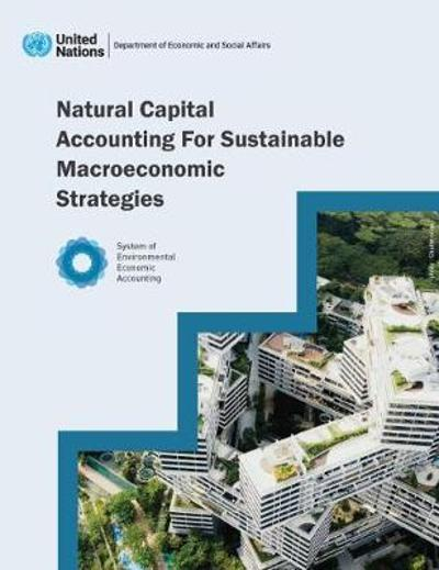 Natural Capital Accounting for Sustainable Macroeconomic Strategies - United Nations Department for Economic and Social Affairs