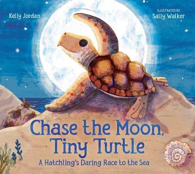 Chase the Moon, Tiny Turtle - Kelly Jordan