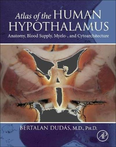 Atlas of the Human Hypothalamus - Bertalan Dudas