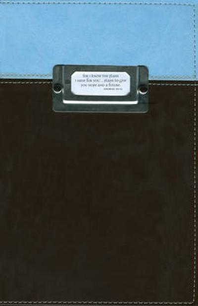06 Spring Bible Brown/light Blue - Walmart - Zondervan Publishing