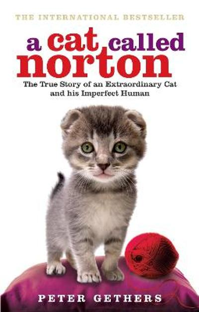 A Cat Called Norton - Peter Gethers