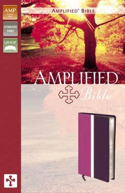 Amplified Bible, Imitation Leather, Pink/Purple - Zondervan Publishing