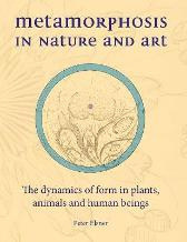 Metamorphosis in Nature and Art - Peter Elsner Matthew Barton Matthew Barton