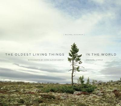 The Oldest Living Things in the World - Rachel Sussman